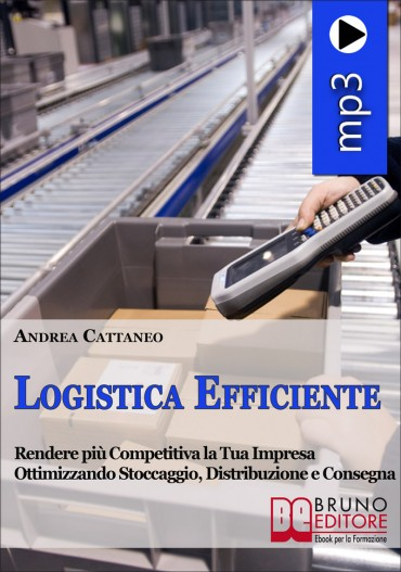Logistica Efficiente