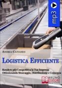 Logistica Efficiente