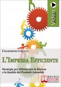 L'Impresa Efficiente
