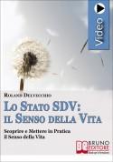 Lo Stato SDV: il Senso della Vita